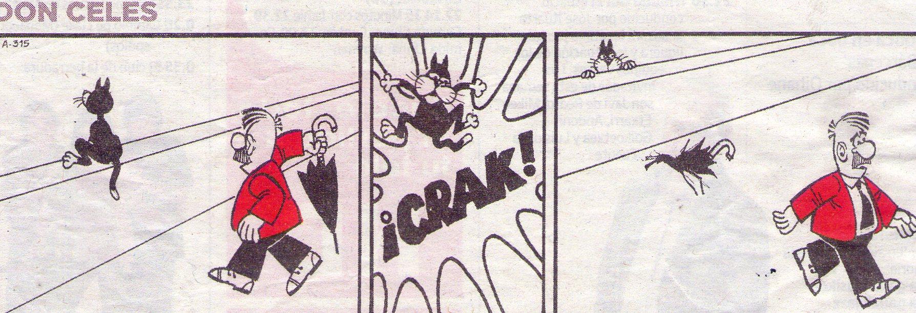 Don Celes ataca a un gato
