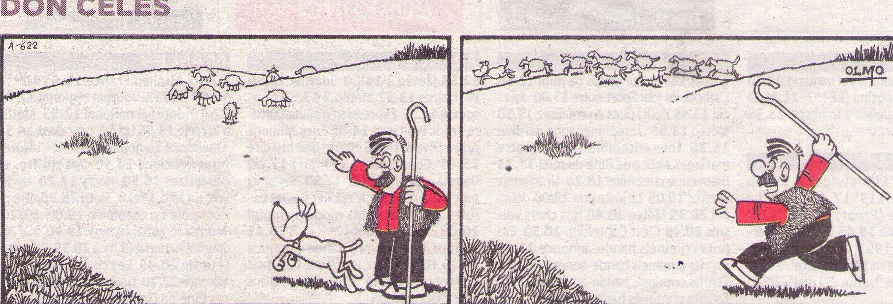 Las ovejas dominan al perro