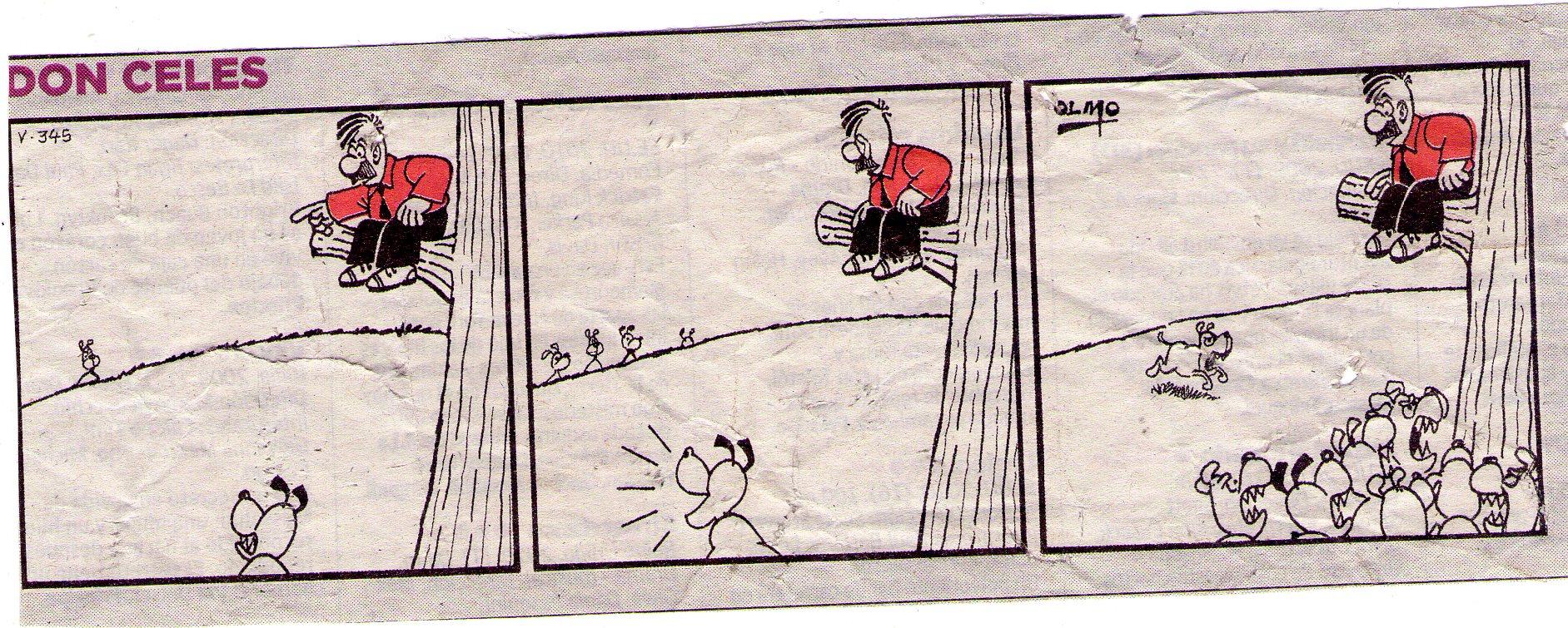 Don Celes subido a un árbol escapando del perro