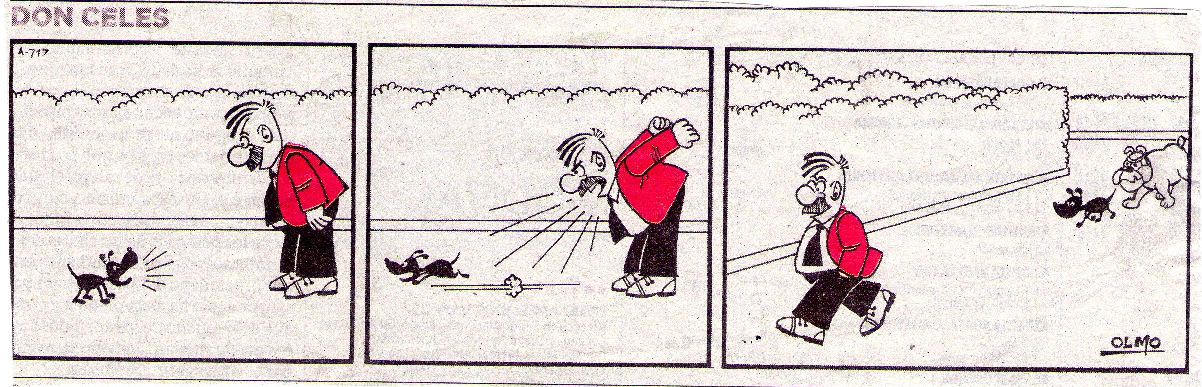 El perro pequeño busca ayuda